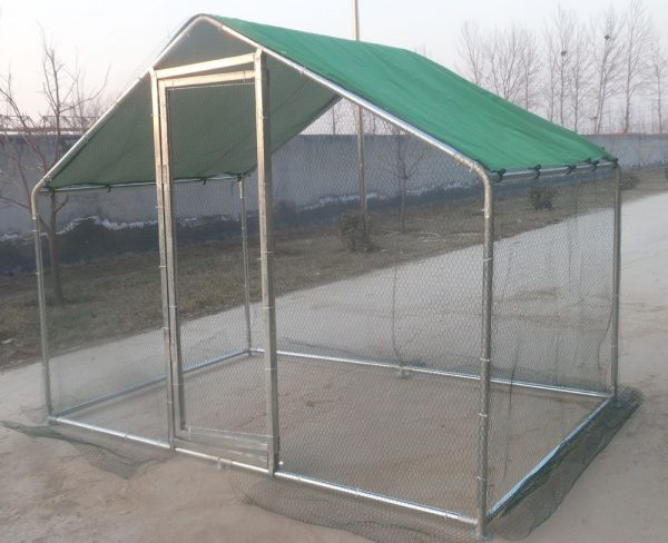 Walk In Chicken Run for Poultry and Dogs product