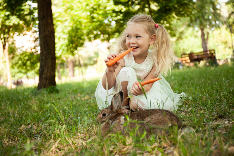 Little girl in white dress eating carrots with her pet rabbit