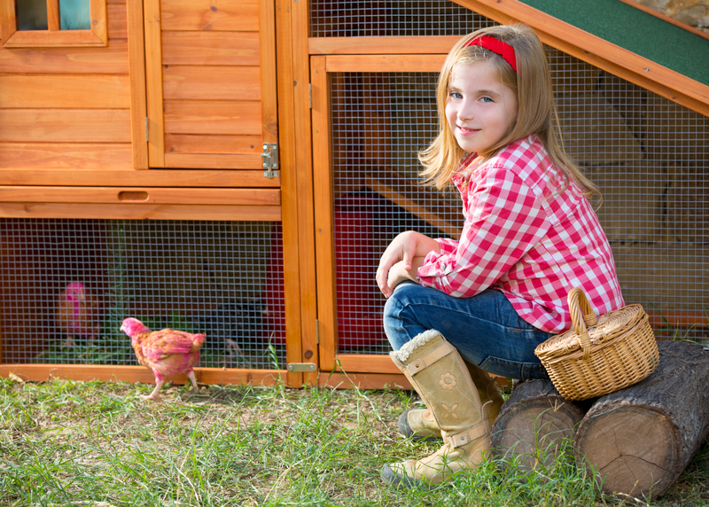 young girl with her pet chickens