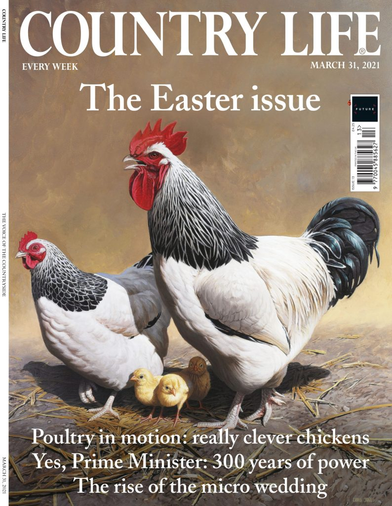Country life magazine front cover March 2021