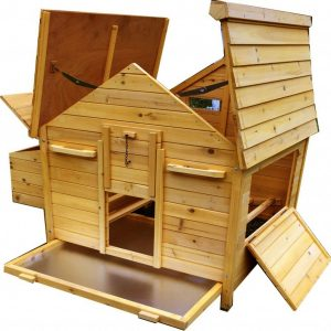 Betty Air Portable - Fox Resistant Chicken House