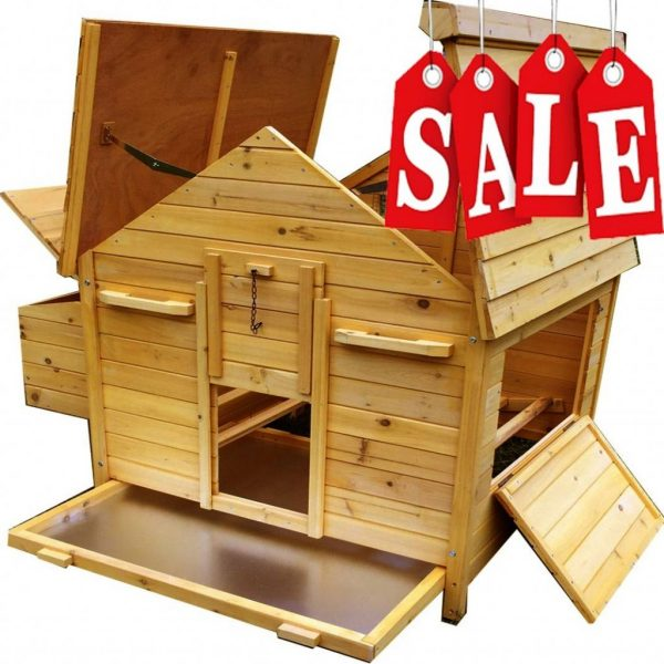 Betty Air Portable - Fox Resistant Chicken House sale